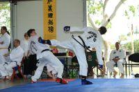 20111105_tvl_tournament_087