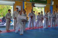 GM_Hwang_Seminar_2016_079